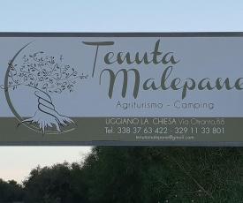 TENUTA MALEPANE