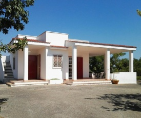 Villa Alto Salento