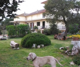 Guest House Villa Ribes