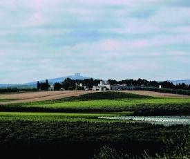 Terre di Traiano
