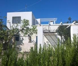 Casina Blu: la quiete della campagna salentina, la prossimità alle spiagge di Gallipoli
