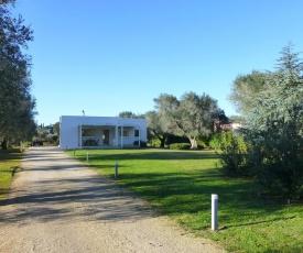 Sunny Puglia - Country House